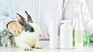 Mars in Amsterdam tegen misbruiken en uitbuiten van dieren
