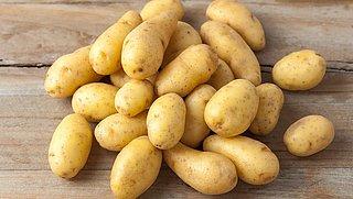 Deel biologische aardappeloogst onnodig beschimmeld door natte zomer