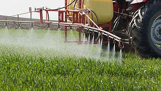 NVWA gaat gebruik gevaarlijke bestrijdingsmiddelen bij gewassen harder aanpakken