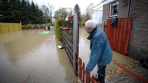 Tegels eruit, groen erin: zo loopt je tuin niet onder water
