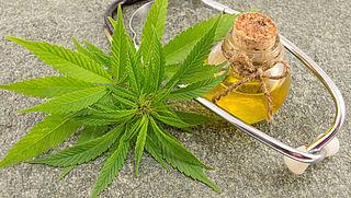 Kabinet wil medicinale wiet verder onderzoeken