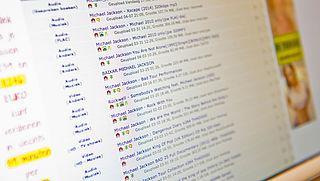Fikse boete voor illegaal downloaden op vakantie