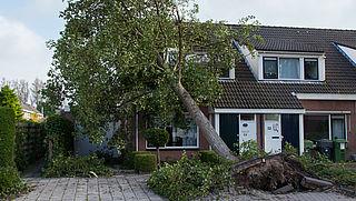 Schade door storm: hoe ben je verzekerd?