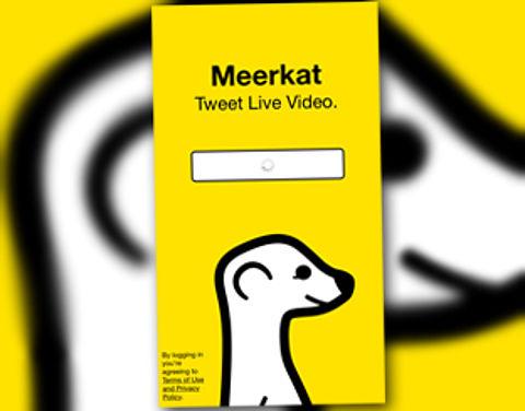 Wat is Meerkat?