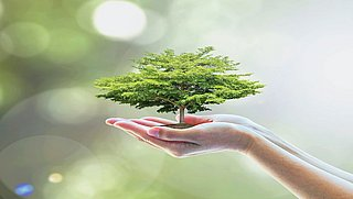 ACM gaat valse duurzaamheidsclaims strenger aanpakken