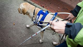 Alle stations in Nederland aangepast voor blinden en slechtzienden