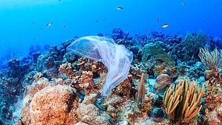 Verbod wegwerpplastic Caribisch Nederland in zicht