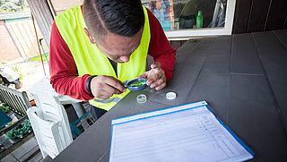 'Overheid doet te weinig tegen riskante muggen'