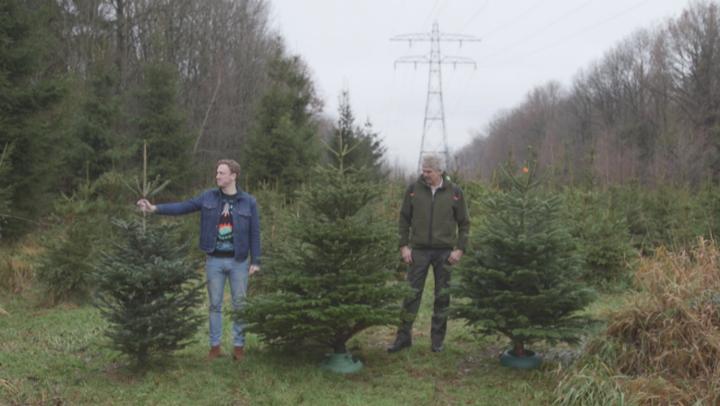 Radar checkt: de kerstbomentest
