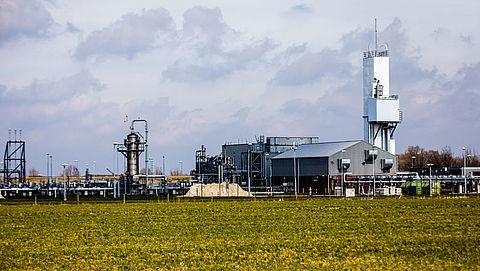 Nederlands stikstofbeleid is in strijd met Europese wetgeving