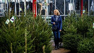 Met deze 8 tips heb je meer plezier van je kerstboom