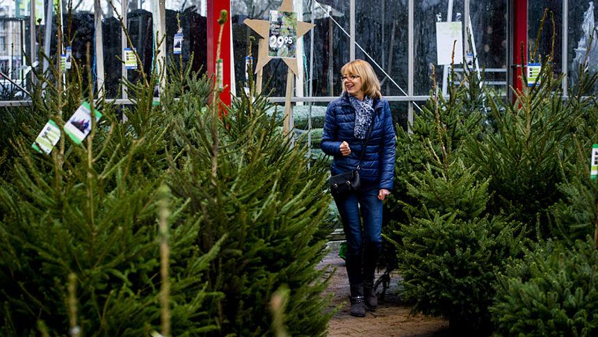 Met Deze 8 Tips Heb Je Meer Plezier Van Je Kerstboom Radar Het