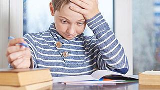 'Werkdruk scholier moet minder'