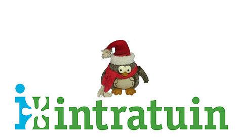 Opgelet: verstikkingsgevaar bij kerstuil Intratuin