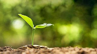 Pensioensector tekent voor samenwerking duurzaam beleggen