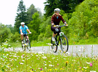 Meerderheid tegen helmplicht op de fiets