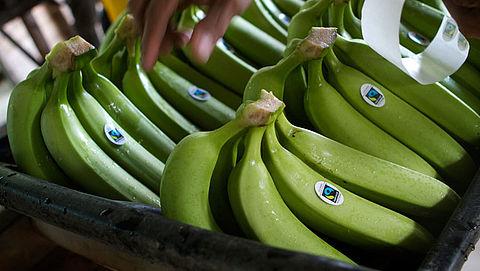 Nederlanders kopen vaker fairtrade-bananen}