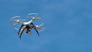Rheden gaat drones verbieden in deel van natuurgebied