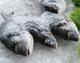 'Multiresistente bacteriën in vis uit Azië'