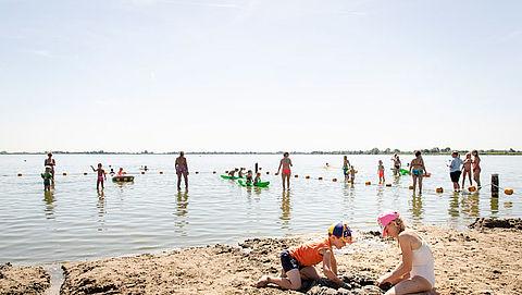 Pas extra op voor blauwalg als je op warme dagen wilt zwemmen