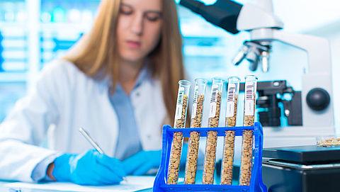 Minister wil experiment met genetische modificatie van gewassen