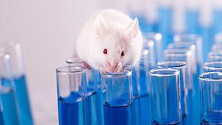 75.000 handtekeningen tegen dierproeven