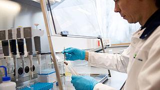 Europol slaat slag tegen verspreiding illegale pesticiden