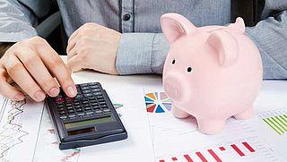 WRR: We zijn te afhankelijk van banken
