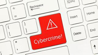 'Nieuwe politieteams tegen cybercrime'