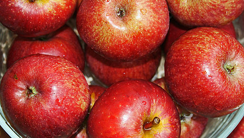 Schijf van Vijf: staat appelmoes erin?}