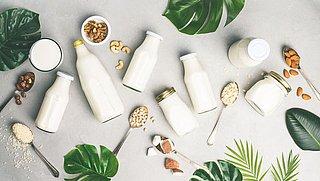Melk vs. melkvervangers: Is soja-, amandel- of havermelk echt beter?