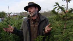 'Een echte kerstboom zit vol landbouwgif', wat zijn de alternatieven?