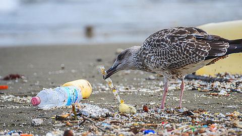 EU-landen zijn het eens over verbod op wegwerpplastic