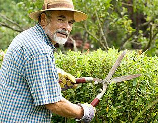 Klusjes in huis en tuin goed voor bloedvaten