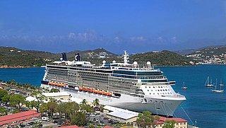 'Cruisebedrijven laten alleen reizigers met vaccinatiebewijs aan boord'