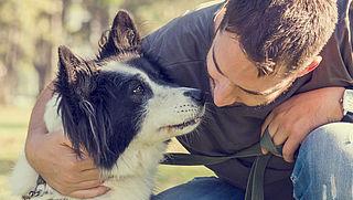 Hoe weet je zeker dat je hond op de juiste manier gefokt is?