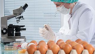 'Bedrijfsleven moet grotere rol spelen bij voedselcontroles'