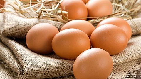 Waarschuwing NVWA voor schadelijke stof fipronil in besmette eieren}