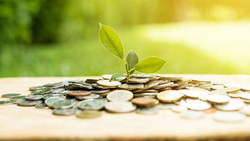ACM gaat misleiding door valse duurzaamheidsclaims tegen