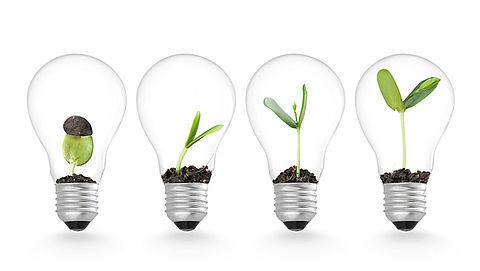 Gemeenten gaan stroom deels uit duurzame energiebronnen halen