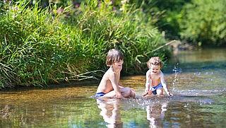 Pas op voor blauwalg, botulisme en dode vissen in zwemwater