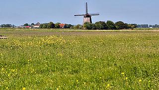 Geen nieuwe wijk in Roermond wegens stikstofbeleid