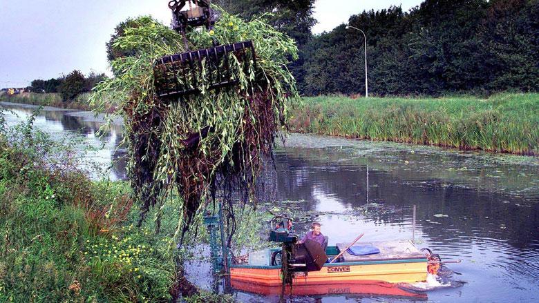 Vastlopende boten en verstrikte zwemmers door waterplanten