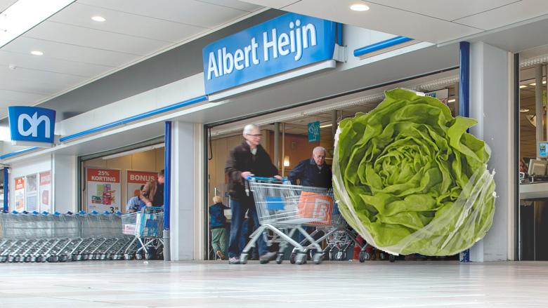 Albert Heijn-kropsla besmet met salmonella