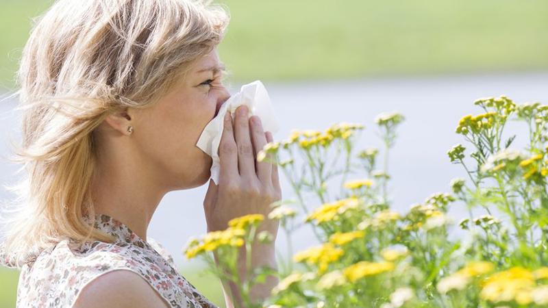 RADAR+: Zomerallergieën voorkomen en genezen