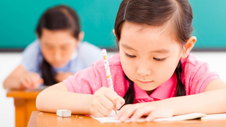 Zorgen bij oppositie om 'vernietigend' onderwijsrapport