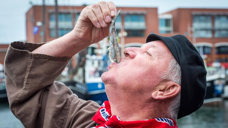Visverkopers komen met eigen alternatief voor AD Haringtest