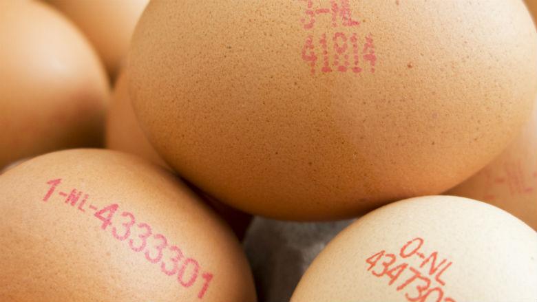 'Biologische pluimveebedrijven gebruikten verboden middelen'
