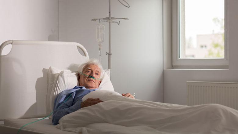Toename aantal euthanasiemeldingen
