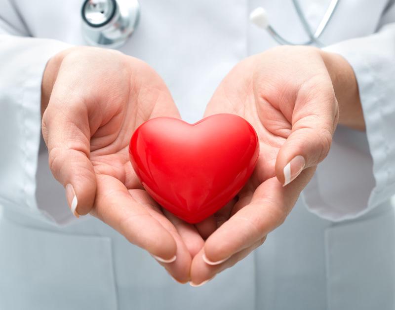 Kwart van Nederlanders wil organen doneren